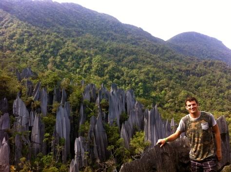 Mulu Pinnacles, Sarawak, Malaysian Borneo