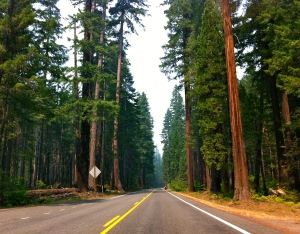On the road from Medford to Crater Lake