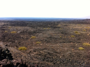 Lava fields in Idaho... who knew
