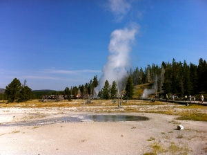 The Upper Geyser Basin