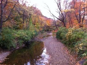 Fall colors near Grant's Farm