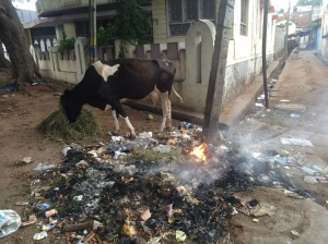 On the street in Mysore