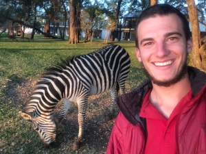 Hanging with zebras at the Royal Livingstone