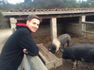 Erik and his swine friends