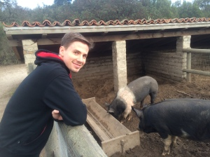Erik and his swine friends