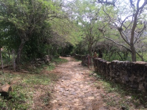 On the ancient path