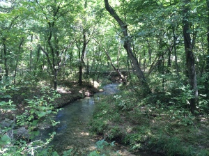 Hiking in the beautiful Chickasaw NRA